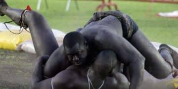 Còmhradh Senegalese
