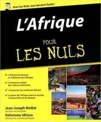 L'Afrique pour les Nuls - Jean-Joseph Boillot et Rahmane Idrissa