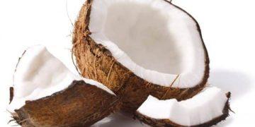 Virtytet e kokosit, fruta ekzotike me përsosmëri