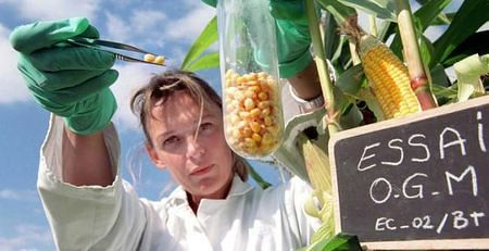 Οι ΓΤΟ θα αποστειρώσουν την ανθρωπότητα μετά τις γενιές του 3