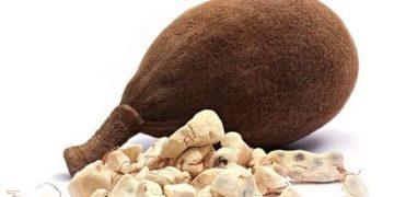 Baobab уруктар