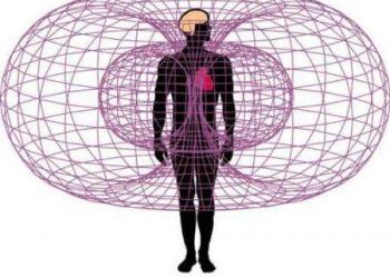 Sirds ģenerētais elektromagnētiskais lauks