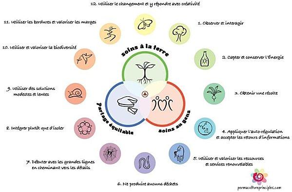 12-principperne for permakultur