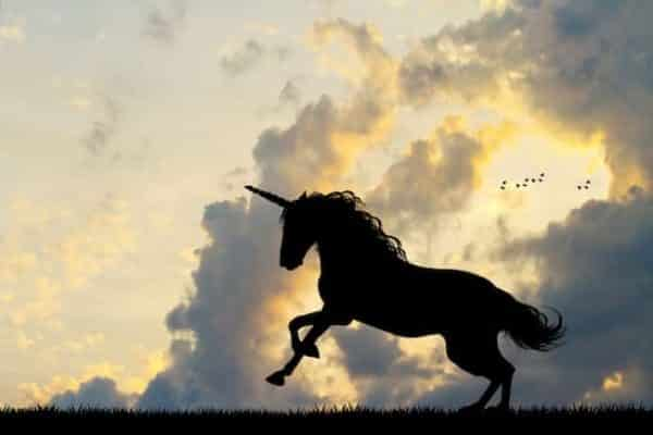 Το Unicorn