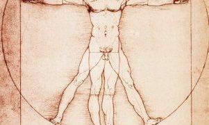 Der Vitruvian Mann