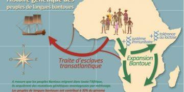 Η μεταναστευτική ιστορία των λαών Bantu E. Patin / Institut Pasteur-CNRS