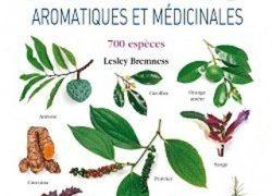 Aromatik və dərman bitkiləri - 700 növləri